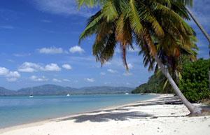 beach-th.jpg